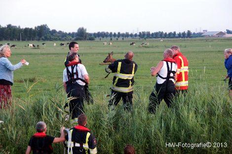 Henry-Wallinga©-Hasselterweg-Rouveen-09