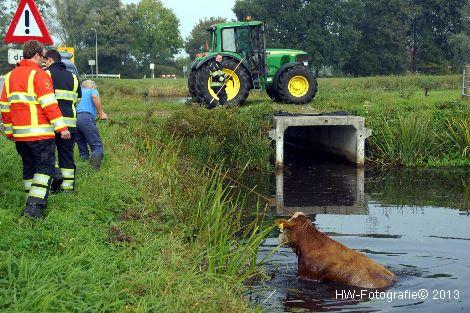 Henry-Wallinga©-Rechterensweg-Rouveen-07