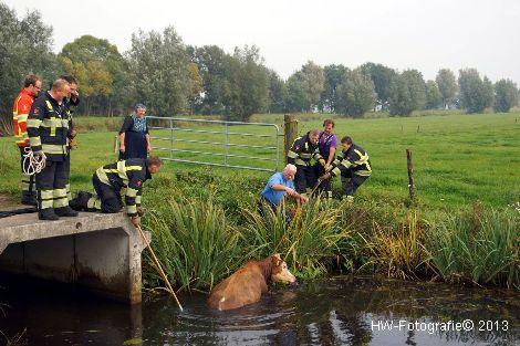 Henry-Wallinga©-Rechterensweg-Rouveen-08