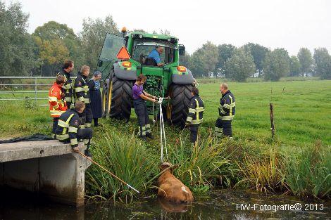 Henry-Wallinga©-Rechterensweg-Rouveen-09