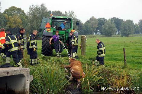 Henry-Wallinga©-Rechterensweg-Rouveen-10