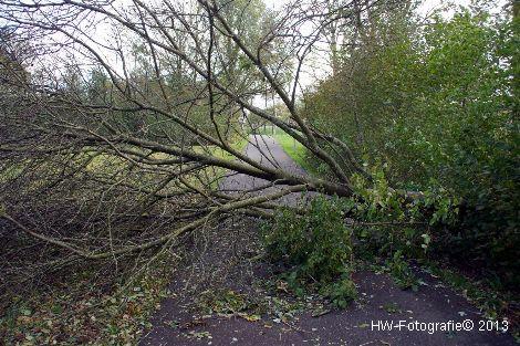 Henry-Wallinga©-Zuidwesterstorm-Zwartewaterland-11