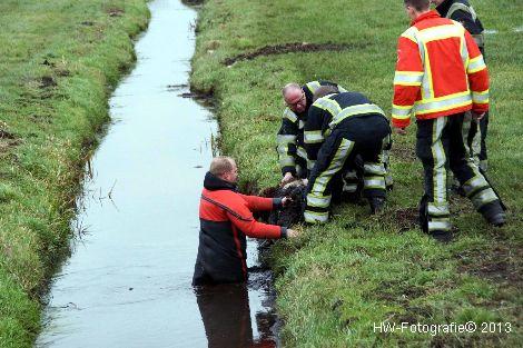 Henry-Wallinga©-Schaap-NieuweWeg-04