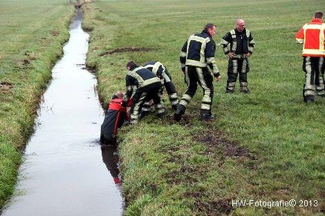 Henry-Wallinga©-Schaap-NieuweWeg-06