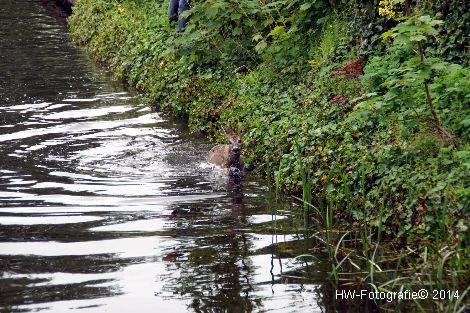 Henry-Wallinga©-Haagjesgracht-Wanneperveen-02