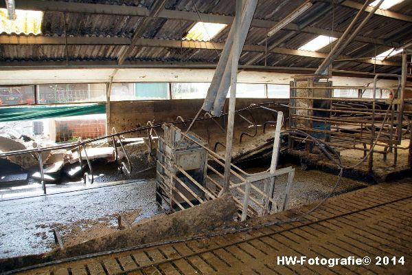 Henry-Wallinga©-Boerderijweg-Hasselt-15