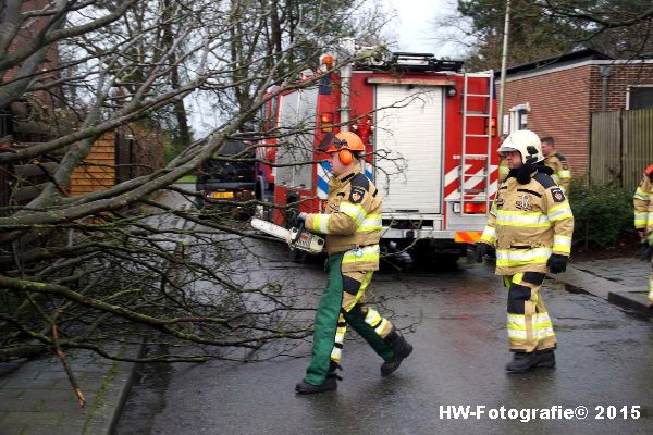 Henry-Wallinga©-Boom-Stormschade-Hasselt-04