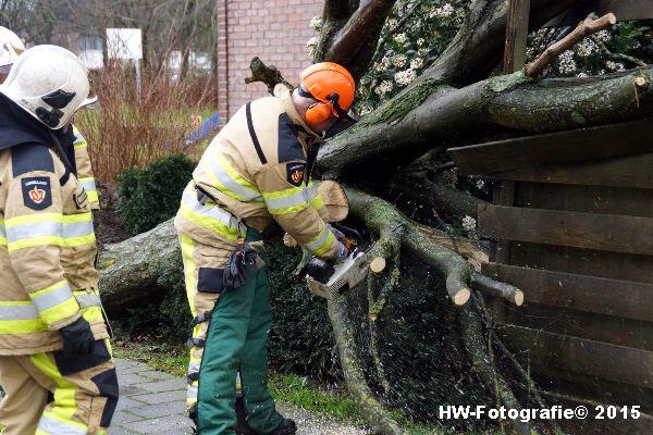 Henry-Wallinga©-Boom-Stormschade-Hasselt-07