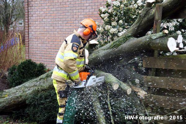 Henry-Wallinga©-Boom-Stormschade-Hasselt-09