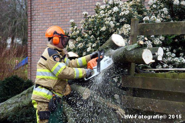 Henry-Wallinga©-Boom-Stormschade-Hasselt-10