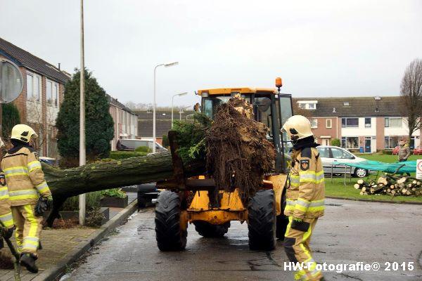 Henry-Wallinga©-Boom-Stormschade-Hasselt-12
