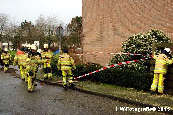 Henry-Wallinga©-Boom-Stormschade-Hasselt-13