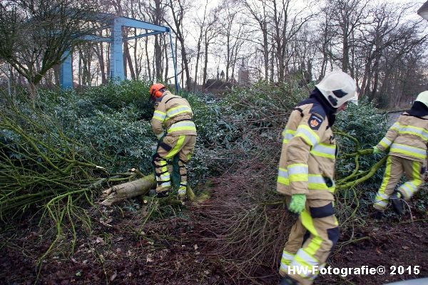 Henry-Wallinga©-Boom-Stormschade-Hasselt-16