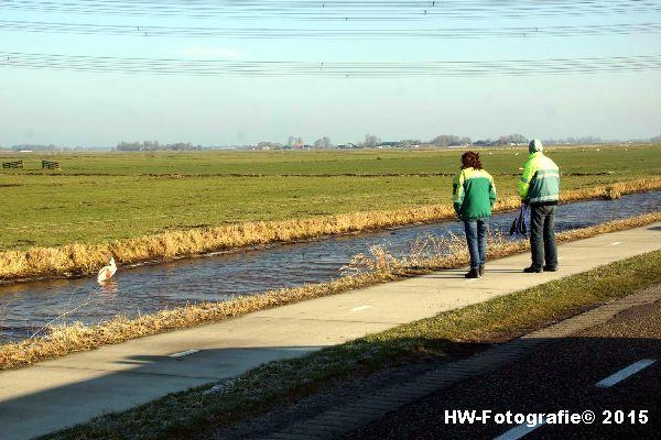 Henry-Wallinga©-Gewonde-Zwaan-Kerkwetering-Mastenbroek-01