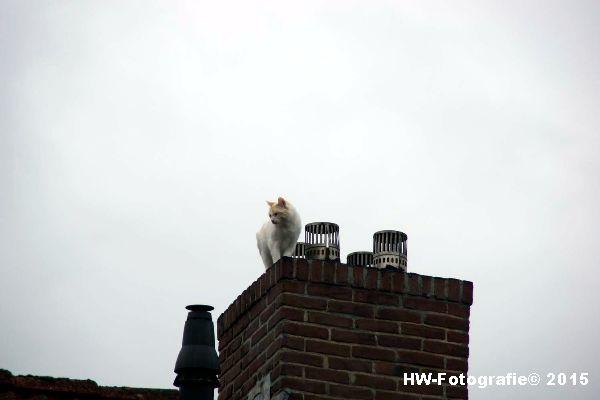 Henry-Wallinga©-Poes-Dak-Genemuiden-02