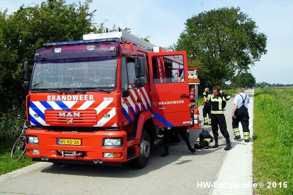 Henry-Wallinga©-Koe-Rechterensweg-Rouveen-04
