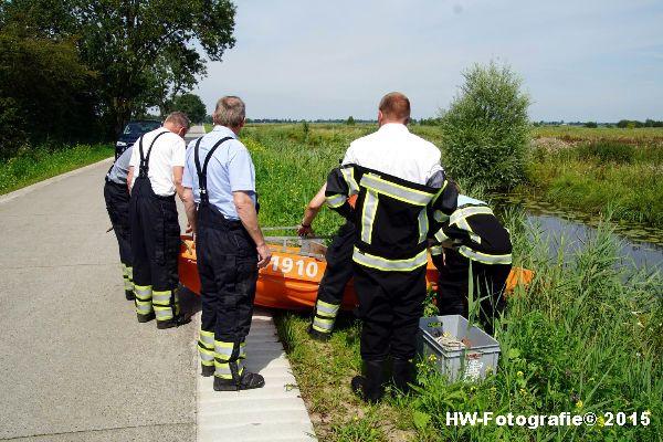 Henry-Wallinga©-Koe-Rechterensweg-Rouveen-05