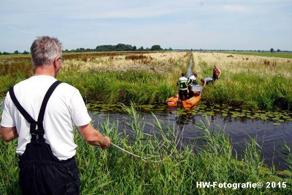 Henry-Wallinga©-Koe-Rechterensweg-Rouveen-07