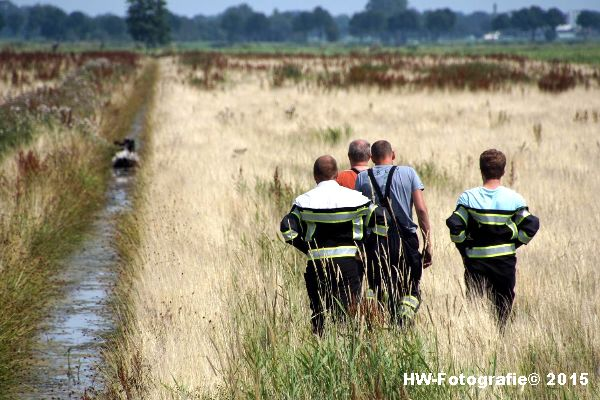 Henry-Wallinga©-Koe-Rechterensweg-Rouveen-08