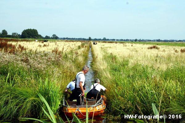 Henry-Wallinga©-Koe-Rechterensweg-Rouveen-09