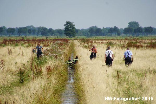 Henry-Wallinga©-Koe-Rechterensweg-Rouveen-11