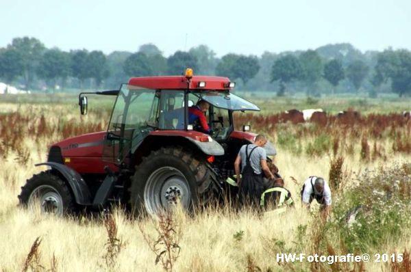 Henry-Wallinga©-Koe-Rechterensweg-Rouveen-17