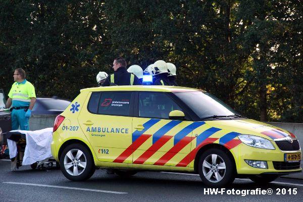 Henry-Wallinga©-Ongeval-kopstaart-Lichtmis-04