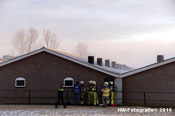 Henry-Wallinga©-Brand-Varkensstal-Zwolle-02