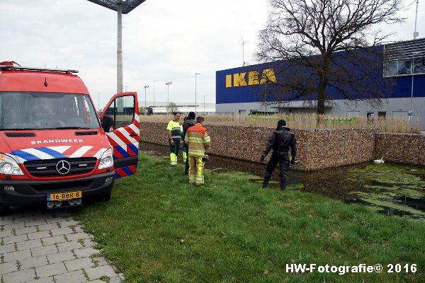 Henry-Wallinga©-Zwaan-Ikea-Zwolle-01