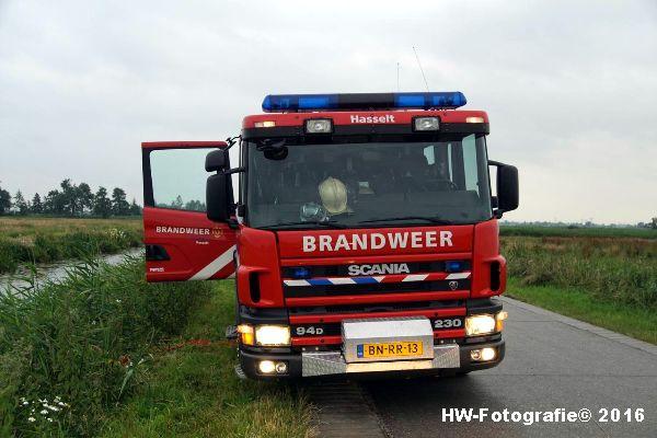 Henry-Wallinga©-Koe-Rechterensweg-2-Rouveen-04