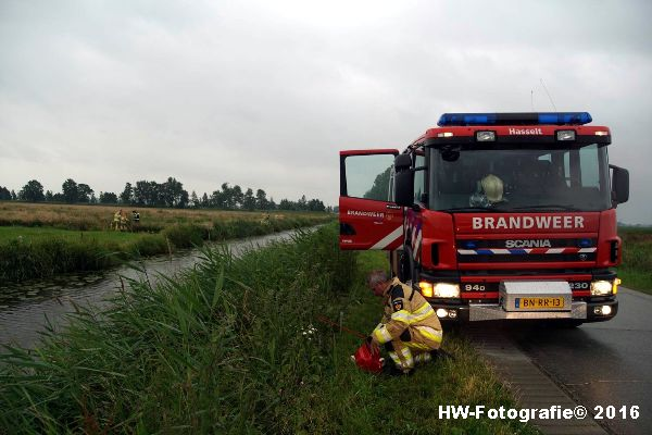 Henry-Wallinga©-Koe-Rechterensweg-2-Rouveen-14