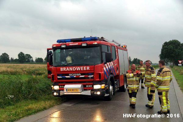 Henry-Wallinga©-Koe-Rechterensweg-2-Rouveen-15