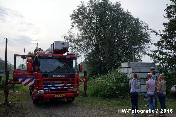 Henry-Wallinga©-Poes-Hooibergen-Hasselt-05