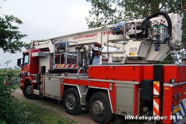 Henry-Wallinga©-Poes-Hooibergen-Hasselt-13