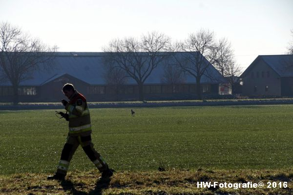 henry-wallinga-ree-hogenbergweg-hasselt-13