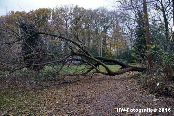 henry-wallinga-stormschade-hasselt-08