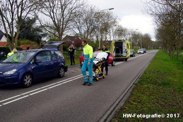 Henry-Wallinga©-Ongeval-Eendjes-Nieuwegweg-Genemuiden-01