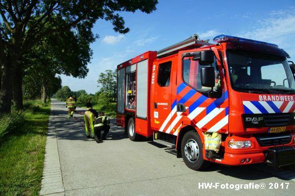 Henry-Wallinga©-Stier-Rechterensweg-Rouveen-14