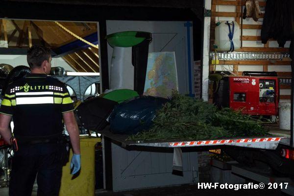 Henry-Wallinga©-Wietplantage-Rijksweg-Staphorst-01