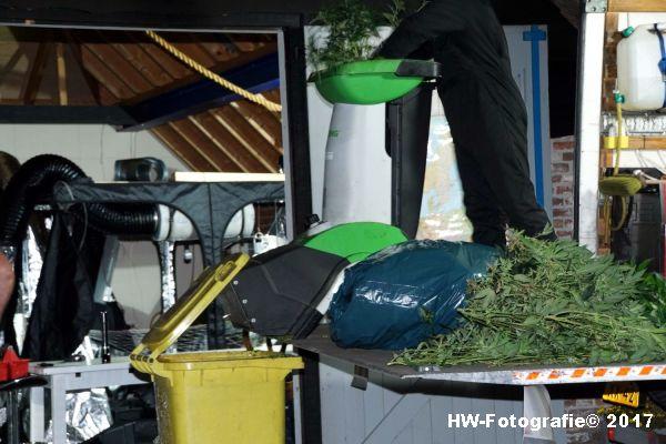 Henry-Wallinga©-Wietplantage-Rijksweg-Staphorst-06