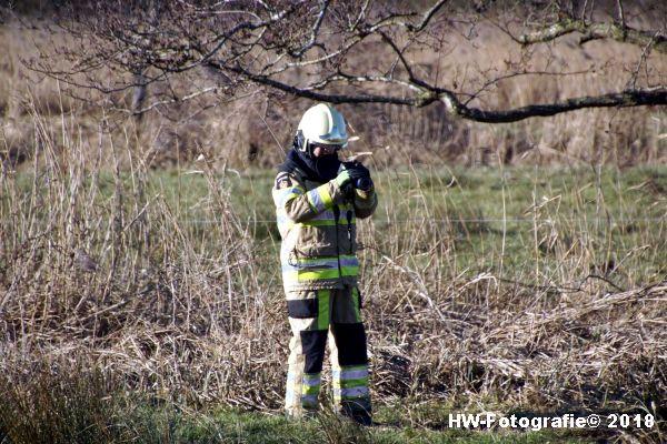 Henry-Wallinga©-Rietbrand-Rechterensweg-Rouveen-09