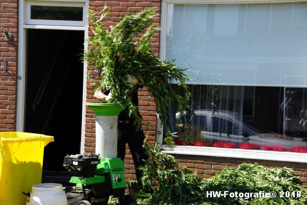 Henry-Wallinga©-Hennepkwekerij-Elshagen-Hasselt-18