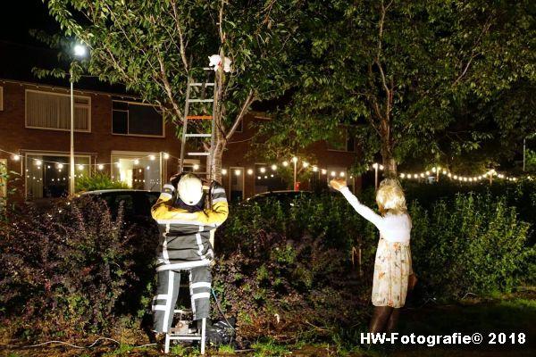 Henry-Wallinga©-Euifeest-Versiering-2018-Hasselt-06
