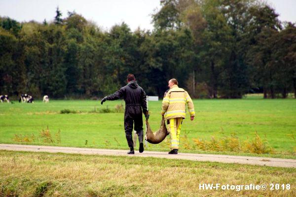 Henry-Wallinga©-Ree-Dedemsvaart-Rouveen-17
