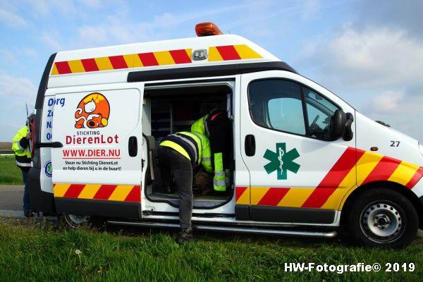 Henry-Wallinga©-Zwaan-Rechterensweg-Staphorst-09
