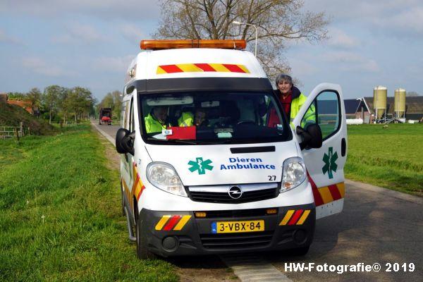 Henry-Wallinga©-Zwaan-Rechterensweg-Staphorst-10