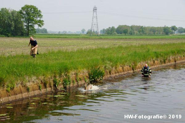 Henry-Wallinga©-Ree-Grindweg-Hasselt-06