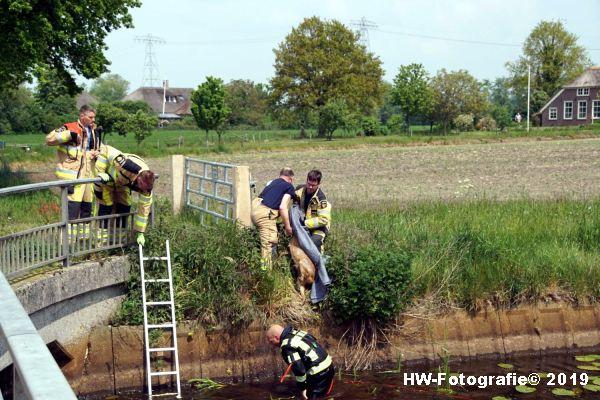 Henry-Wallinga©-Ree-Grindweg-Hasselt-12