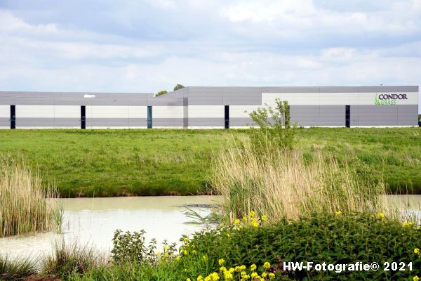 Henry-Wallinga©-Lekkage-Condor-Hasselt-01